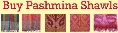 Buy Pashmina Shawls